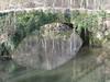 Ivyromanbridge