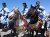 Kingshorses_1