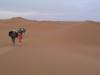 Sandcamelwalk