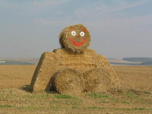 Interesting haystack